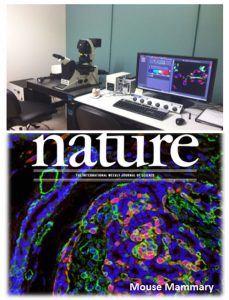 A picture of the confocal microscope at Penn State College of Medicine is seen along with a picture of the cover of the journal Nature showing a microscopy image.