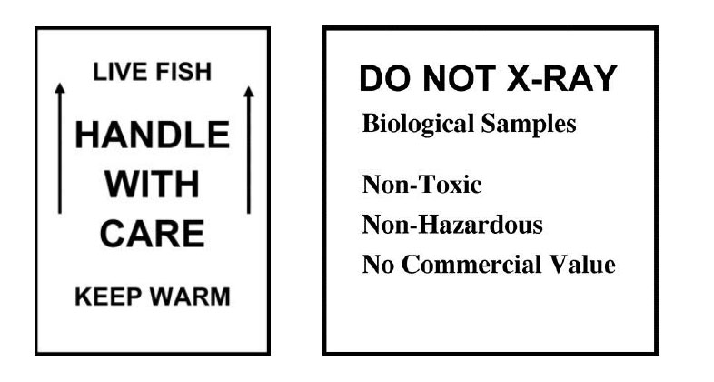 Two square labels contain language showing that a package contains live fish and cannot be X-rayed.