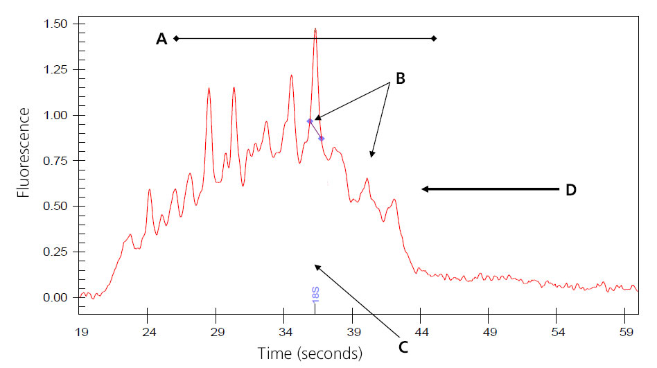A graph depicting severely degraded RNA shows the time in seconds on the x-axis and the fluorescence on the y-axis. Four points are marked with arrows and the letters A through D.