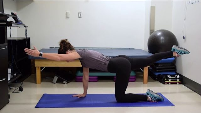 A still from a video shows a person performing the Bird Dogs exercise.