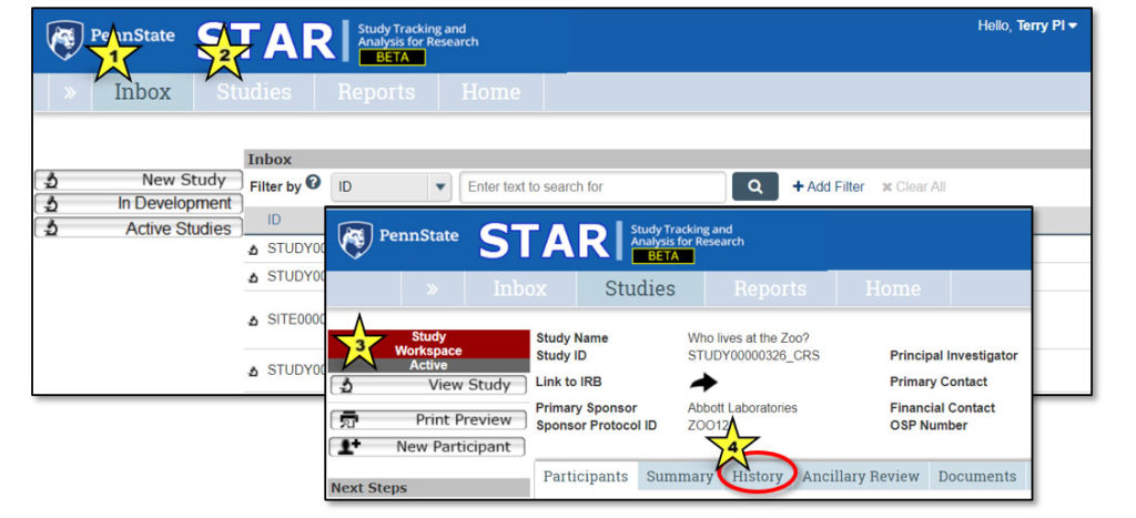 A screenshot of the STAR system shows colored stars labeled 1 and 2 in the menu bar at the top, and colored stars labeled 3 and 4 on another screenshot set atop the first. 3 is at left and 4 is in the bar of tabs in the middle of the page.